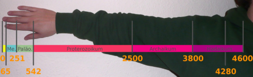 Geological timescale, visualised with the human arm