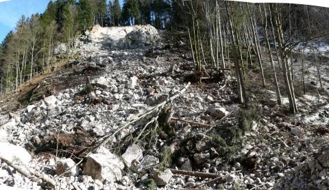 Felssturz am Hirschsprung, Obermaiselstein, 2011. Ansicht vom Hangfuß.