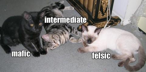 Igneous cats.